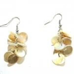 beige shell earrings